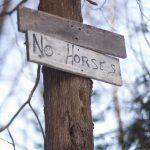 No horses.